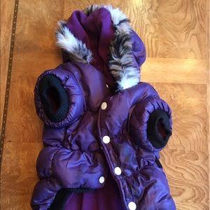 Purple Pet Puffer Coat!